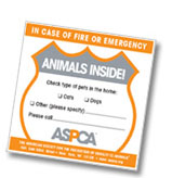 Free Pet Rescue Sticker by ASPCA