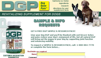 Get a Free DGP Sample and Research Pack
