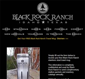 Free Black Rock Ranch Stainless Steel Travel Mug