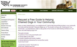 Free Guide for Helping Abused Animals