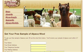 Free Alpaca Wool Sample