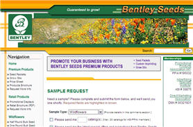 Free Wildflower Seeds from Bentley Seeds