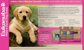 Free Bag of Eukanuba Puppy Food