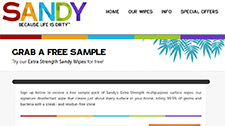Free Sandy's Extra Strength multipurpose surface wipes