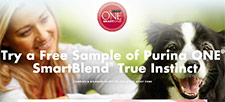 Free Purina One Smartblend Sample