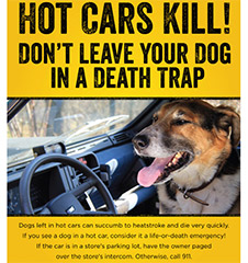 "Free Copies of PETA's New ""Hot Cars Kill"" Poster"