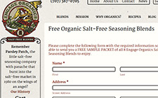 Free Organic Salt Seasoning Sample